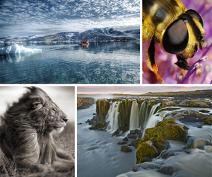 bee, landscape, and waterfall image
