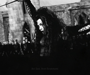 bellatrix and harry potter image