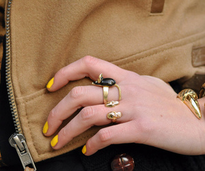 rings, claws, and fashion image