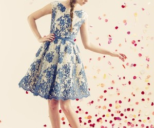 fashion and alice + olivia image