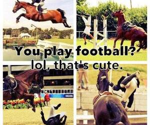 horse, football, and equestrian image