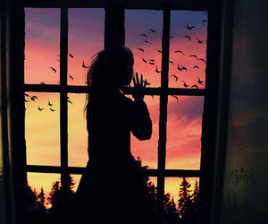 girl, bird, and window image