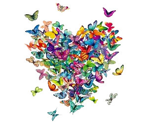 butterflies, colorful, and heart image
