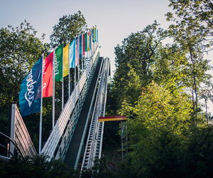 amusement park, flags, and nature image