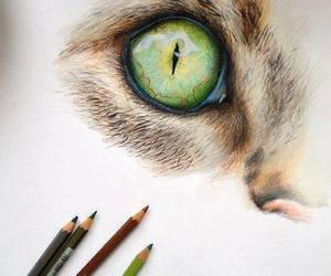 eye, cat, and drawing image