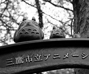 japanese and totoro image