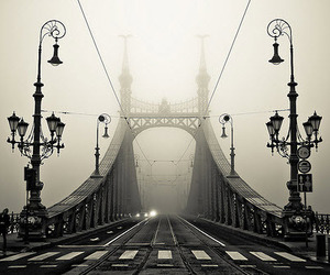 bridge, black and white, and budapest image