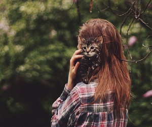 cat, girl, and kitty image