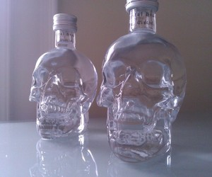 skull, grunge, and pale image