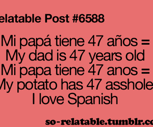 spanish, quote, and lol image