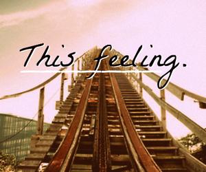 feeling, rollercoaster, and fun image