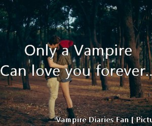 only, Relationship, and the vampire diaries image