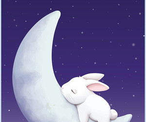 moon, bunny, and rabbit image
