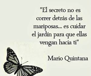 frases, butterfly, and mariposas image