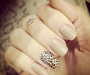 nails, leopard, and nail art image