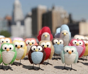 birds, crafts, and owls image