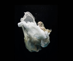 underwater, black, and water image