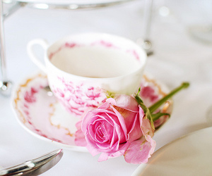 rose, cup, and pink image