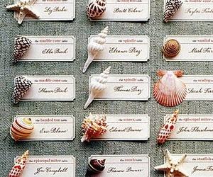 Place cards and shells image