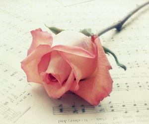 rose, music, and flowers image