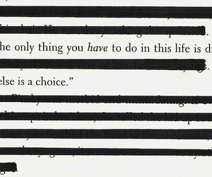 choice, die, and life image