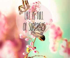 quote, life, and flowers image