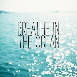 Quotes to live by / (26) beach quotes | Tumblr
