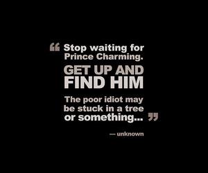 prince charming and love image