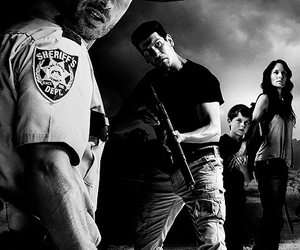 black and white, shane, and the walking dead image