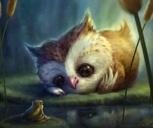 owl, cute, and frog image