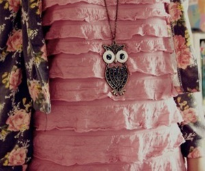 fashion, owl, and pink image