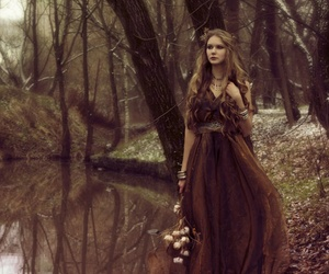 beauty, forest, and brown image