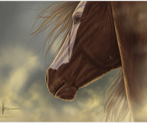 drawings, horses, and sky image