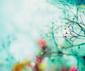 tree, flower, and nature image