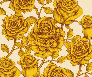 flowers, floral, and roses image