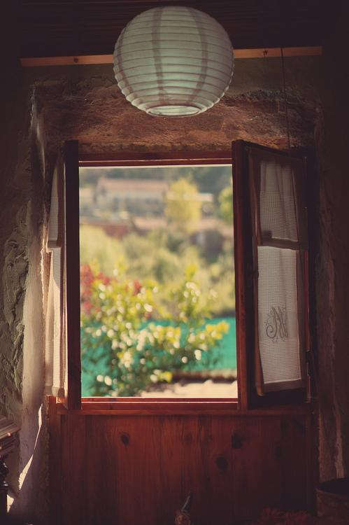window, nature, and photography image