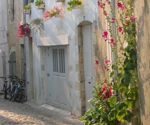 flowers, house, and travel image