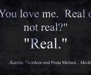 mockingjay, peeta, and real image