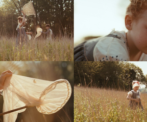 bright star, field, and meadow image