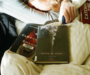 books and looking for alaska image