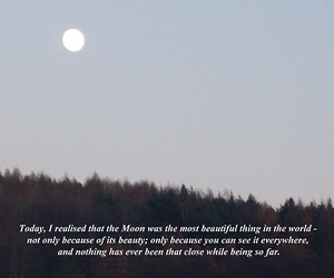 moon, quote, and kate coven image