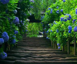 path, stairs, and blue image