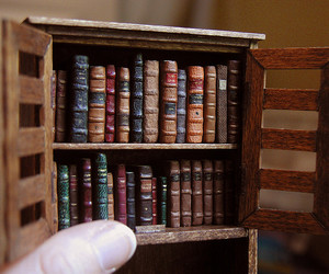 bookcase, books, and dollhouses image