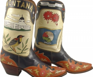 bird and cowboy boots image