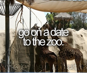 zoo, before i die, and date image