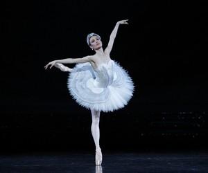 ballet and swan lake image