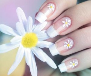 art, daisy, and flores image