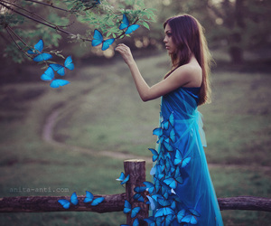 butterfly, blue, and girl image