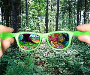 glasses, forest, and green image