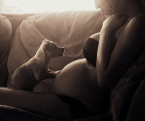 babies, dog, and pregnant image